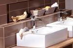 un mitigeur pour vasque