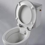 un bloc WC avec cuvette sans bride