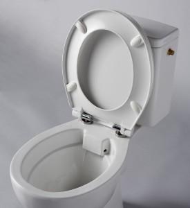 211038 pack wc rimless sans bride