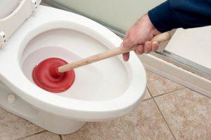 comment déboucher vos WC
